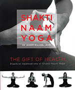 Shakti Naam Yoga by Joseph_Michael_Levry_-_Gurunam